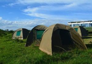 Camping in Lake Mburo